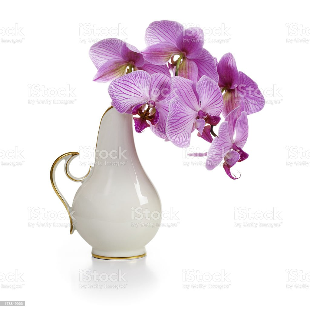 Vase with Orchid royalty-free stock photo