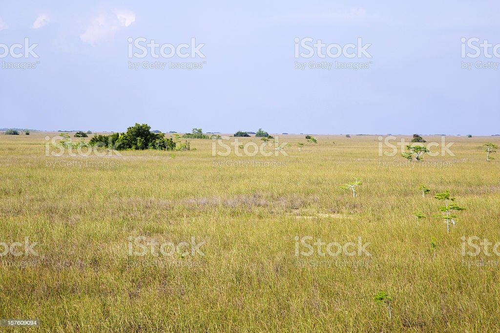 Vast Landscape royalty-free stock photo