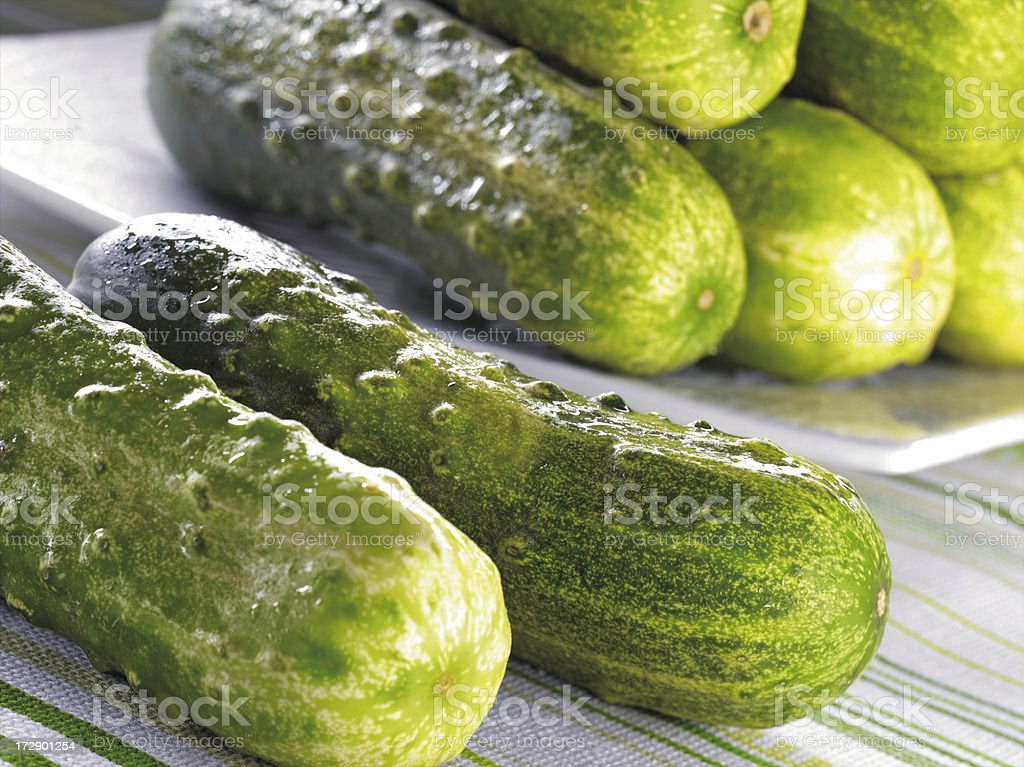 A vast quantity of Green cucumbers stock photo