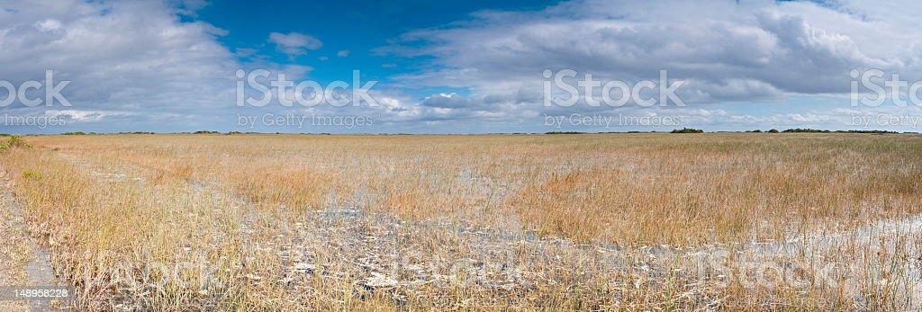 Vast wetlands Everglades NP Florida royalty-free stock photo