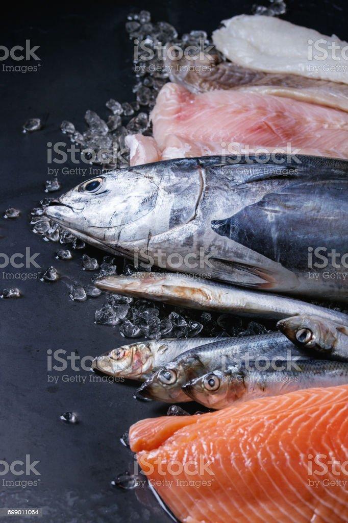 Vatiery of raw fresh fish stock photo