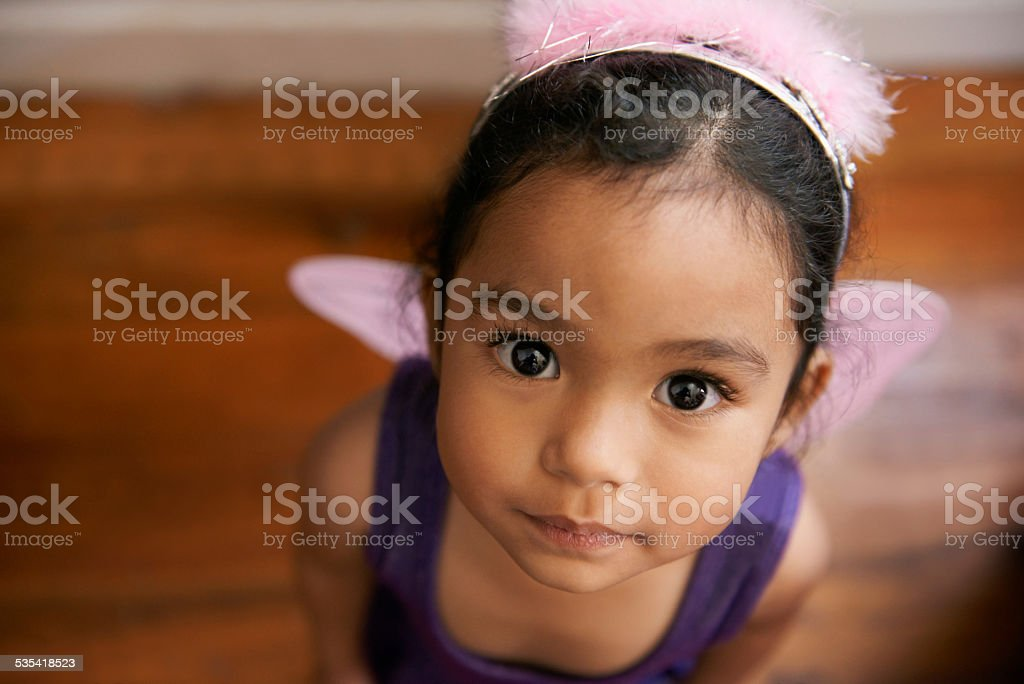 I've been super good - can I have a treat now? stock photo