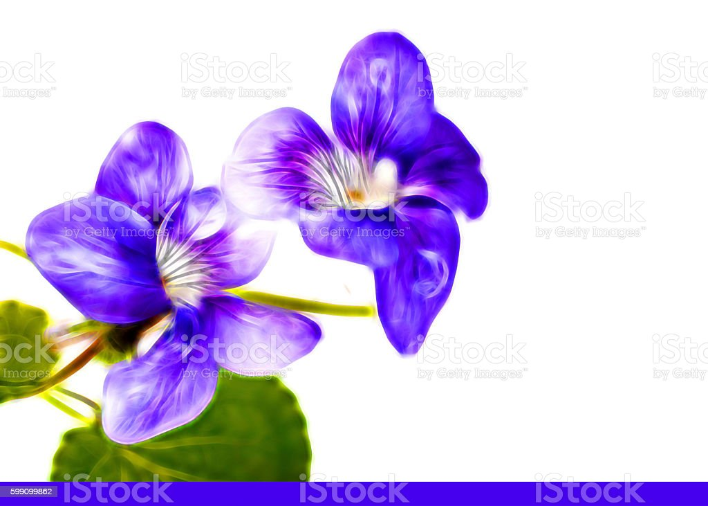Vector Violet in blue neon - colors stock photo