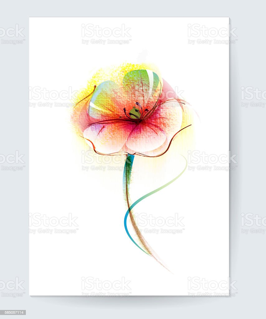Vector watercolor painting red poppy flower stock photo