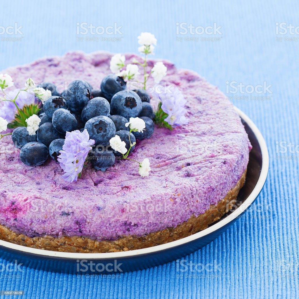 Vegan raw blueberry cake stock photo