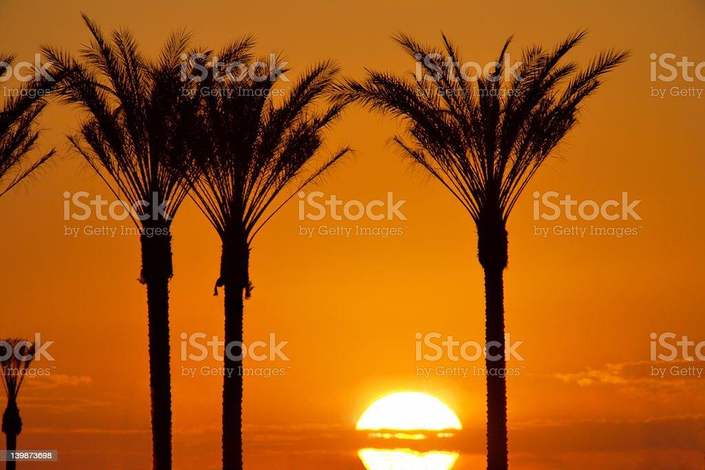 Las Vegas alba foto stock royalty-free
