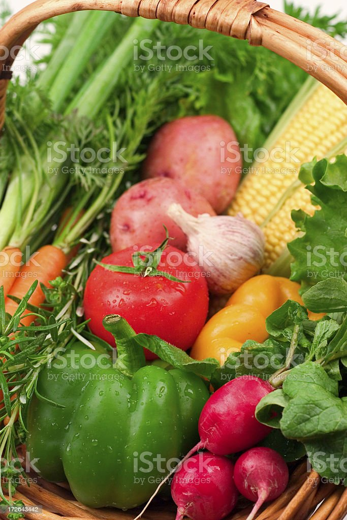 Vegetable Bounty royalty-free stock photo