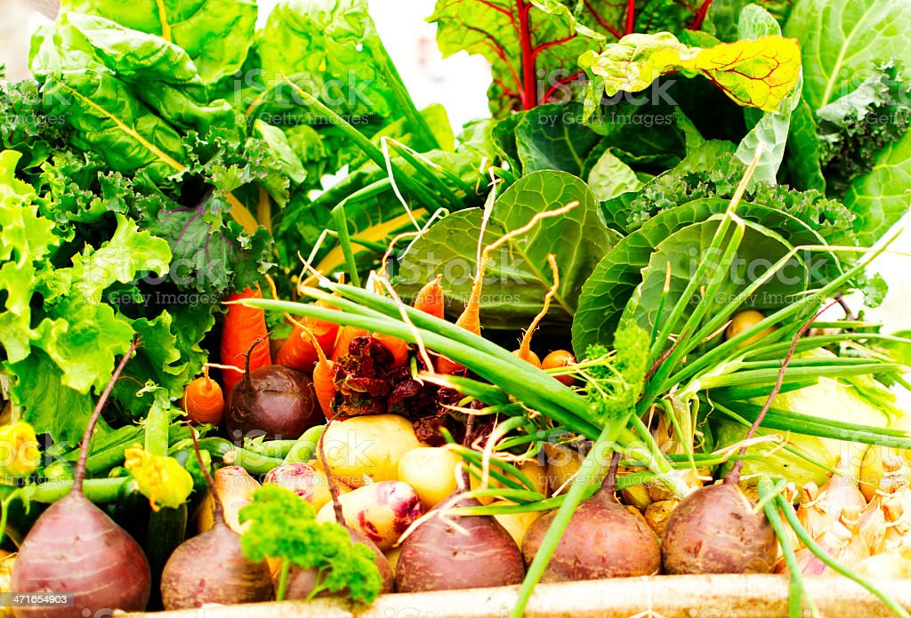 Vegetable box royalty-free stock photo