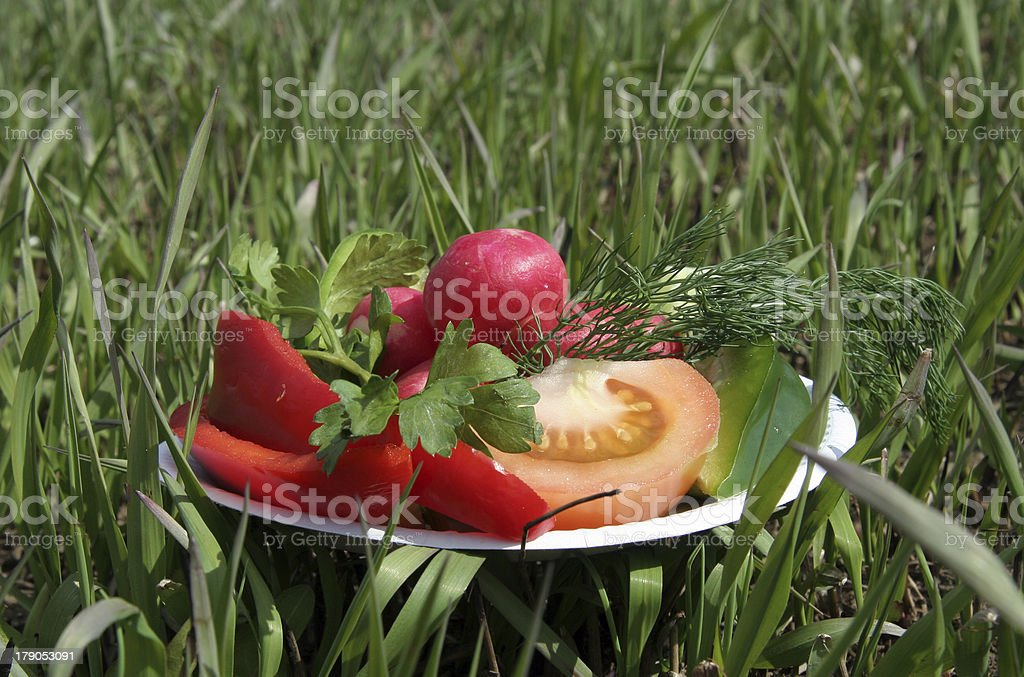Vegetable dish royalty-free stock photo