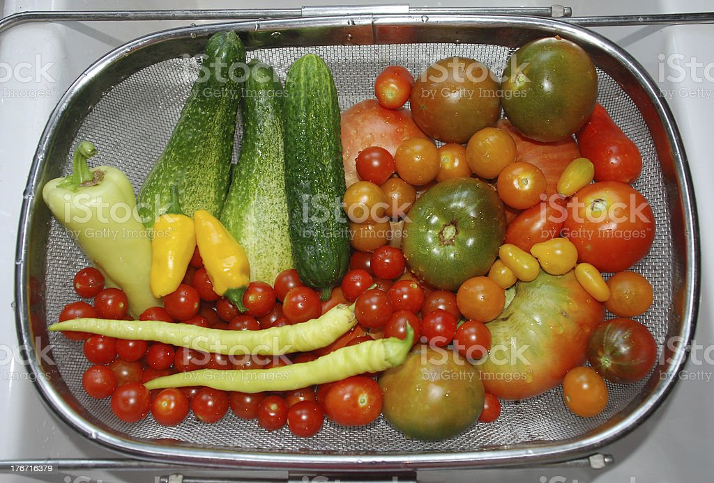 Vegetable Harvest in Kitchen Sink royalty-free stock photo