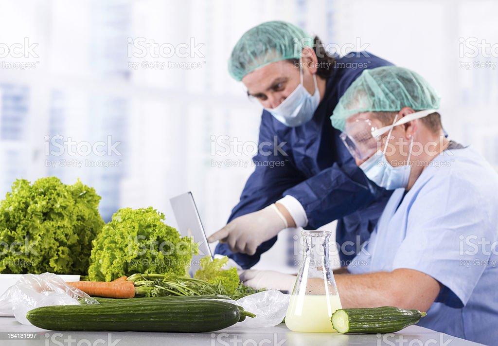Vegetable laboratory royalty-free stock photo