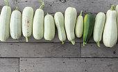 vegetable marrows in the garden