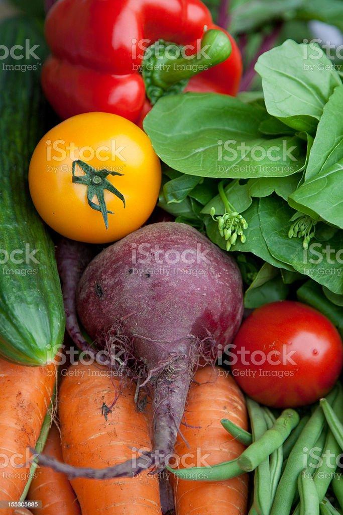 Vegetable Medley royalty-free stock photo