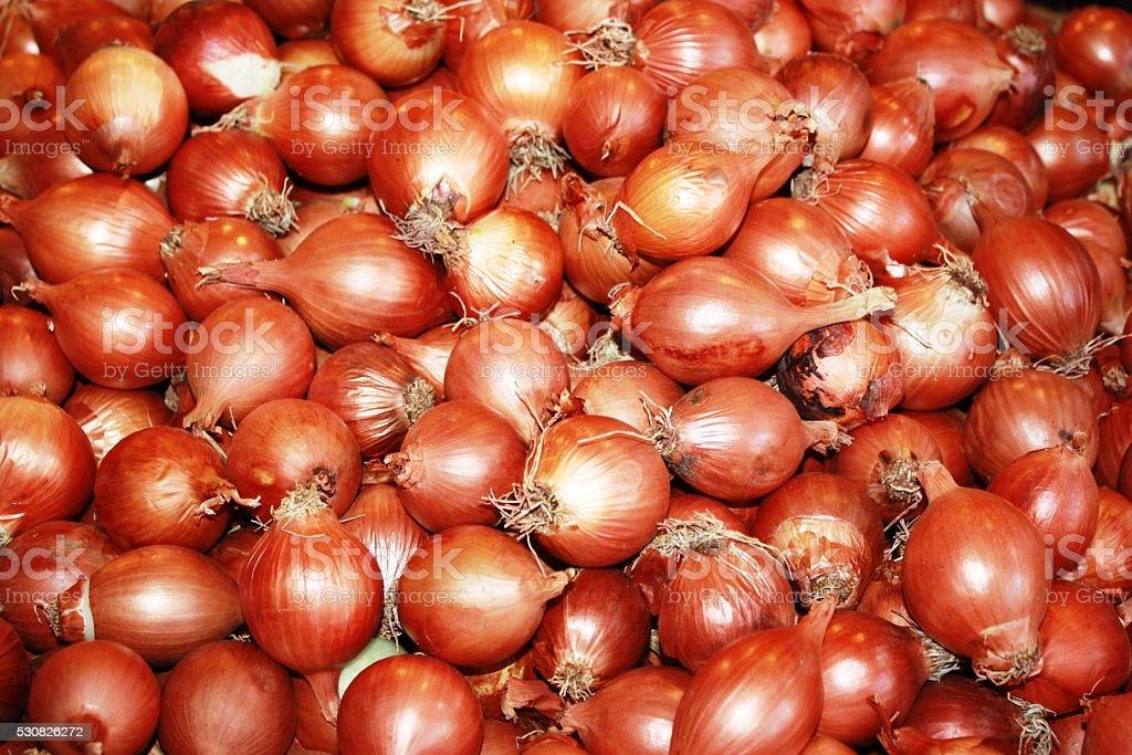 vegetable onion on the market stock photo