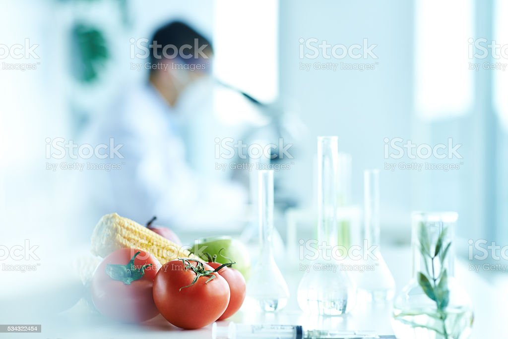 GM vegetable stock photo