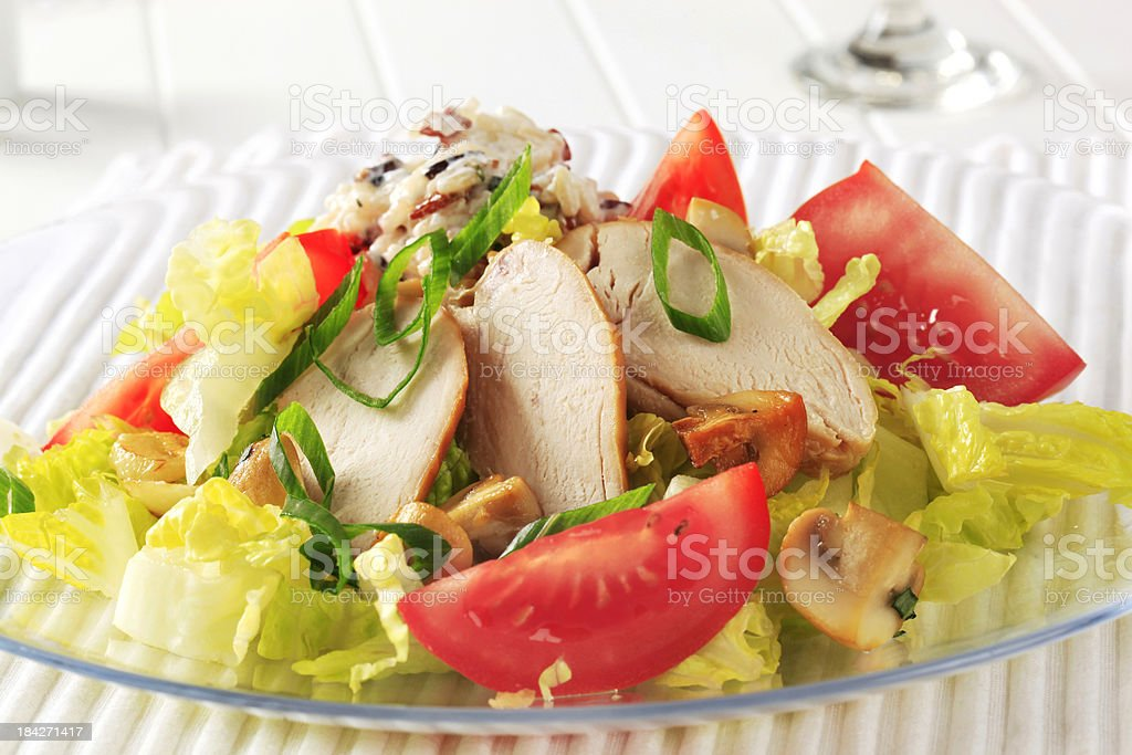 Vegetable salad and slices of roasted chicken stock photo