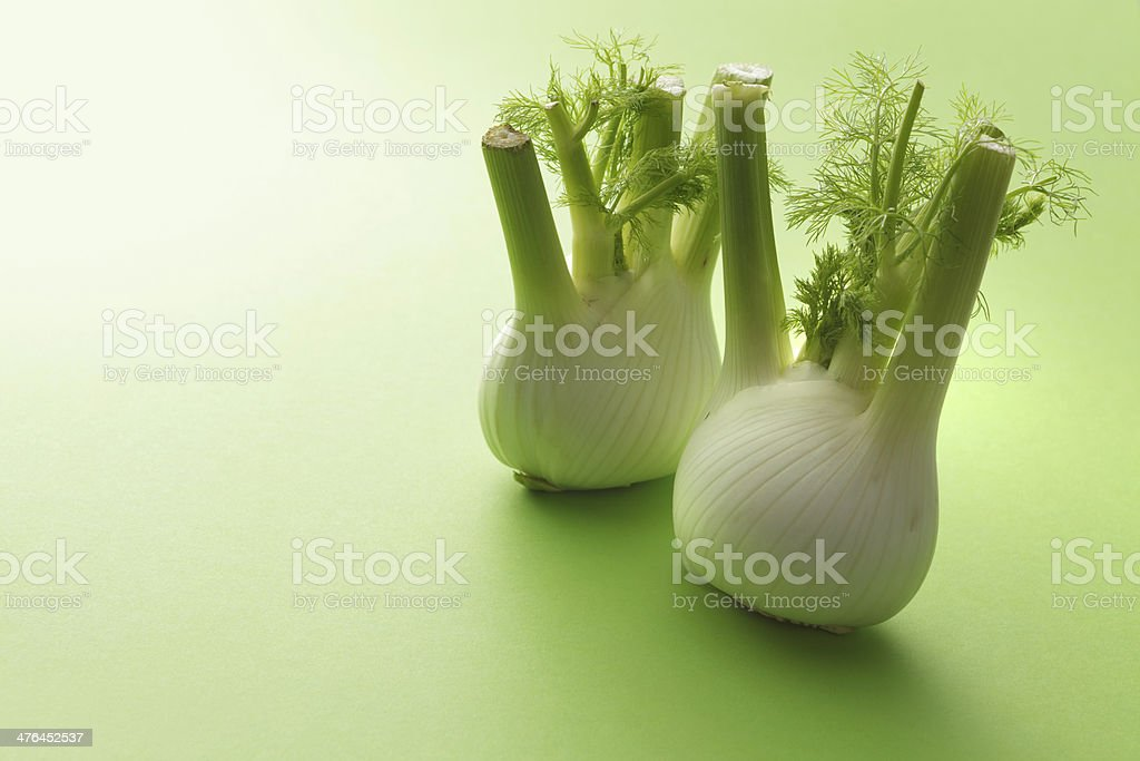 Vegetable Stills: Fennel royalty-free stock photo