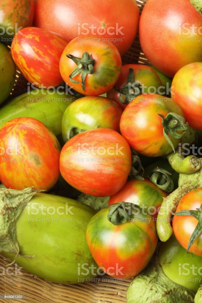 Vegetable Tomato, eggplant  on white background stock photo