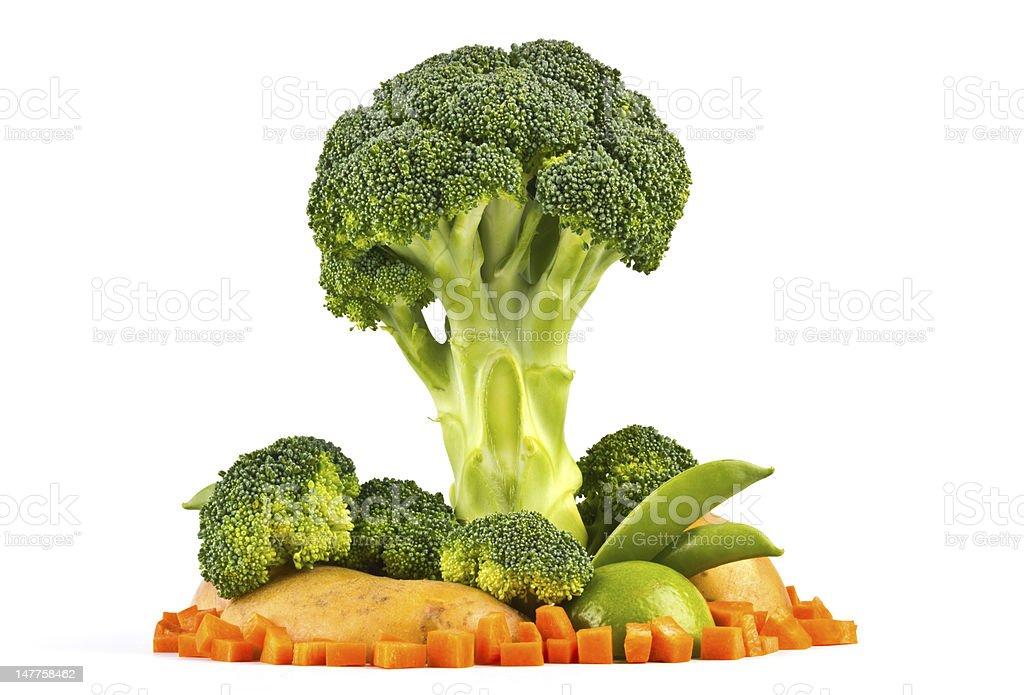 vegetable tree model royalty-free stock photo