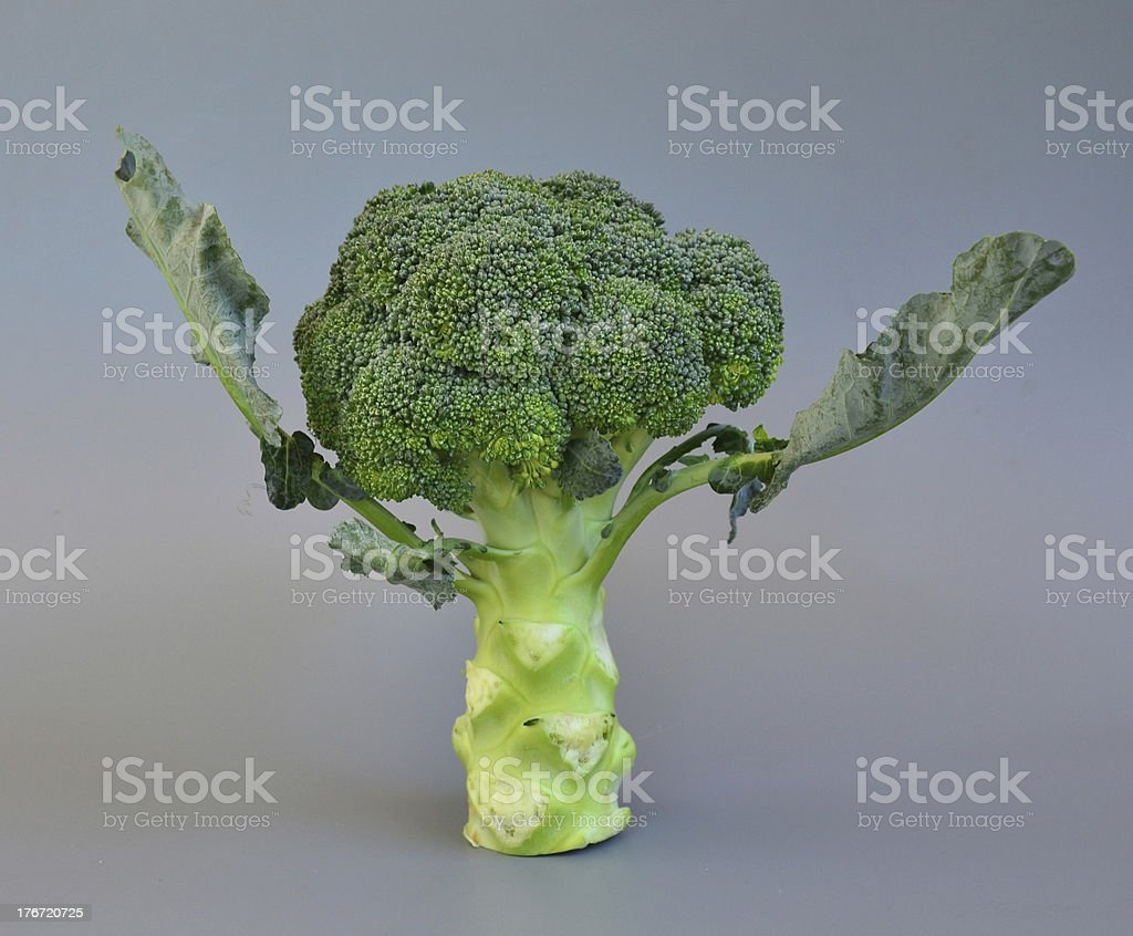 Vegetables 40 royalty-free stock photo