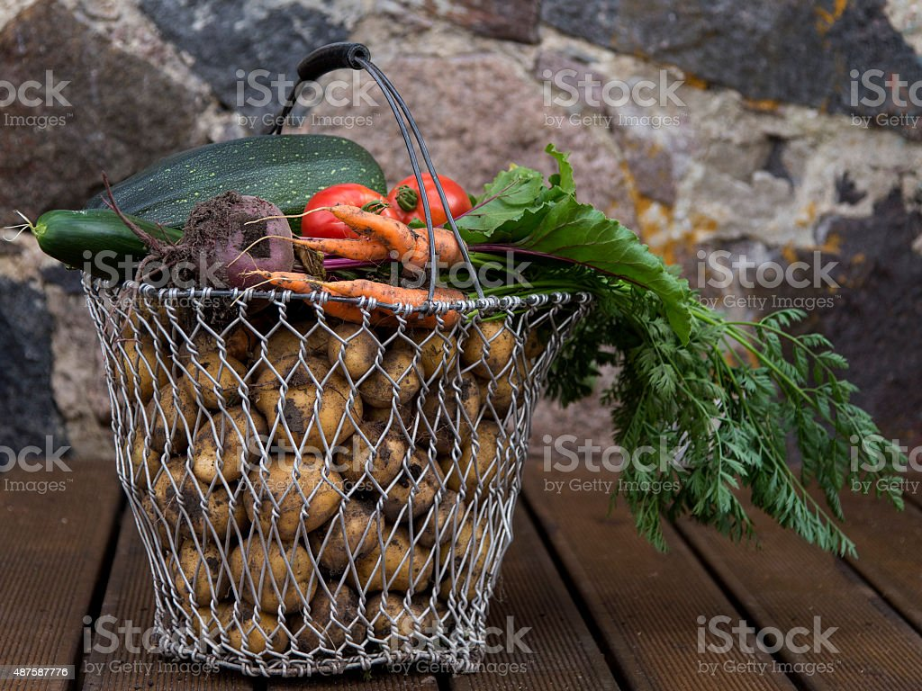 Vegetables and potatoes in basket royalty-free stock photo
