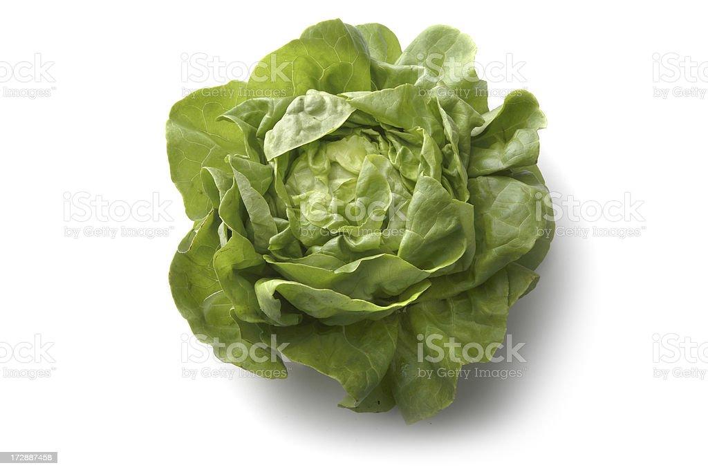 Vegetables: Butterhead Lettuce Isolated on White Background stock photo