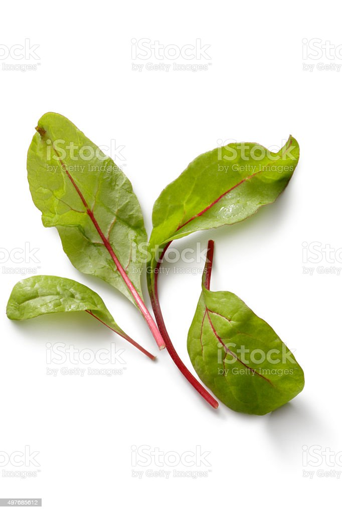 Vegetables: Chard Isolated on White Background stock photo