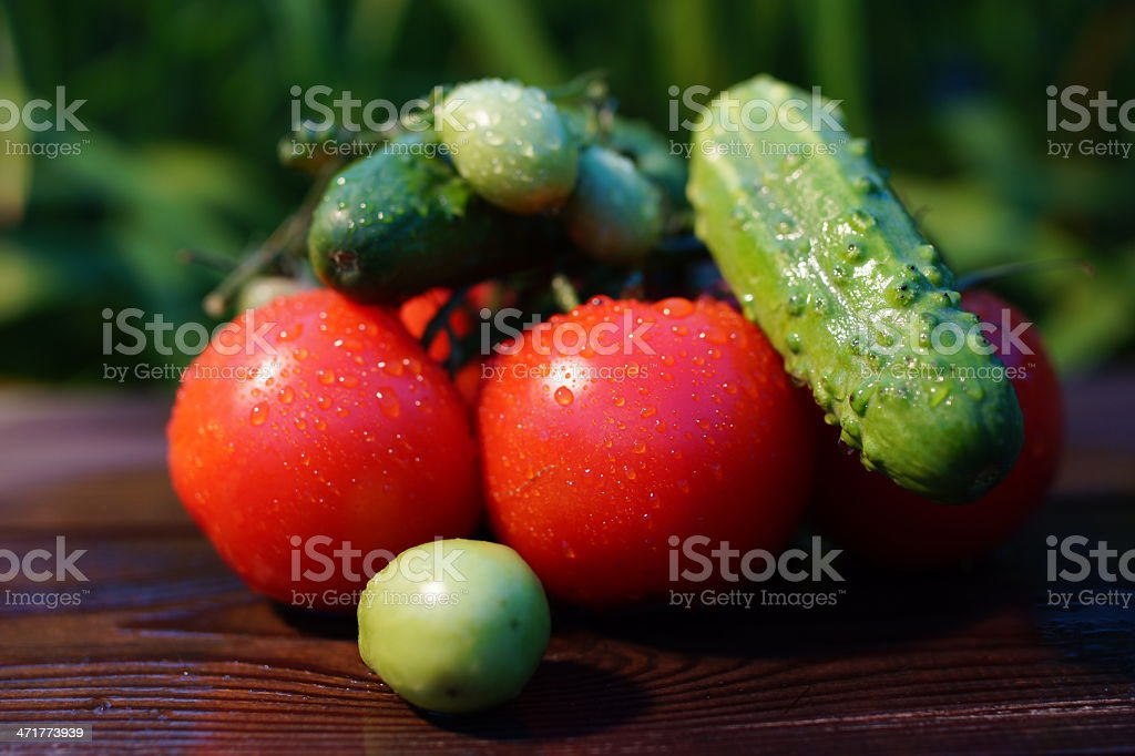 Vegetables: cucumbers and tomatoes royalty-free stock photo