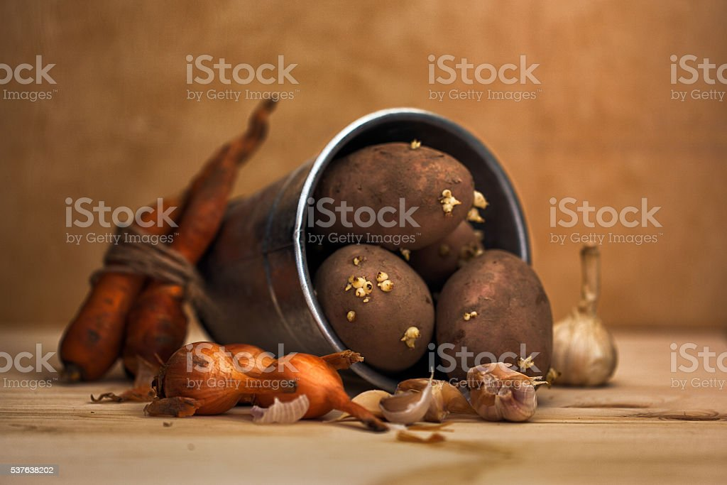 Vegetables in a bucket stock photo