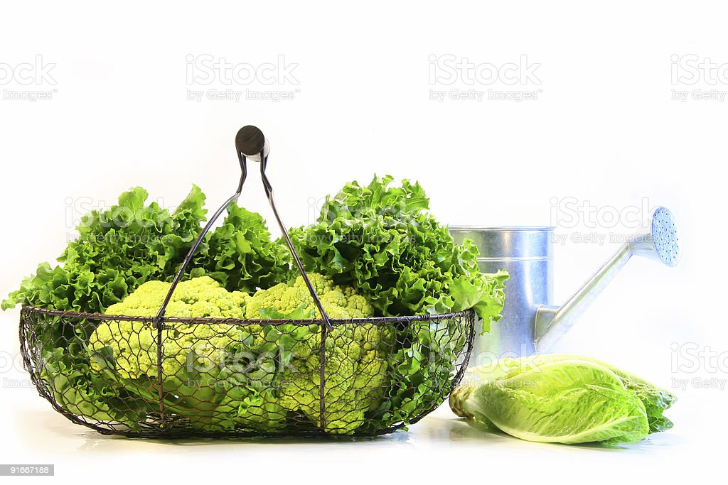 Vegetables in a metal basket royalty-free stock photo