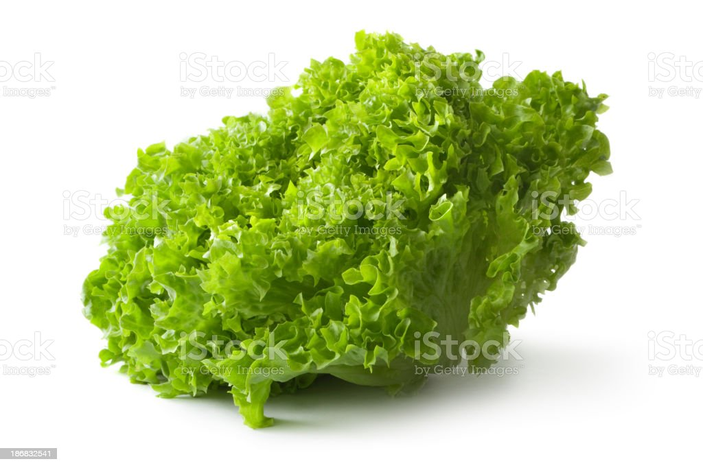 Vegetables: Lollo Bionda Lettuce Isolated on White Background royalty-free stock photo