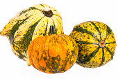 Vegetables of pumpkin decorative isolated on white background