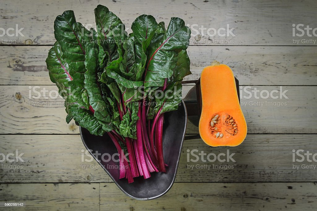 Vegetables on old scale stock photo