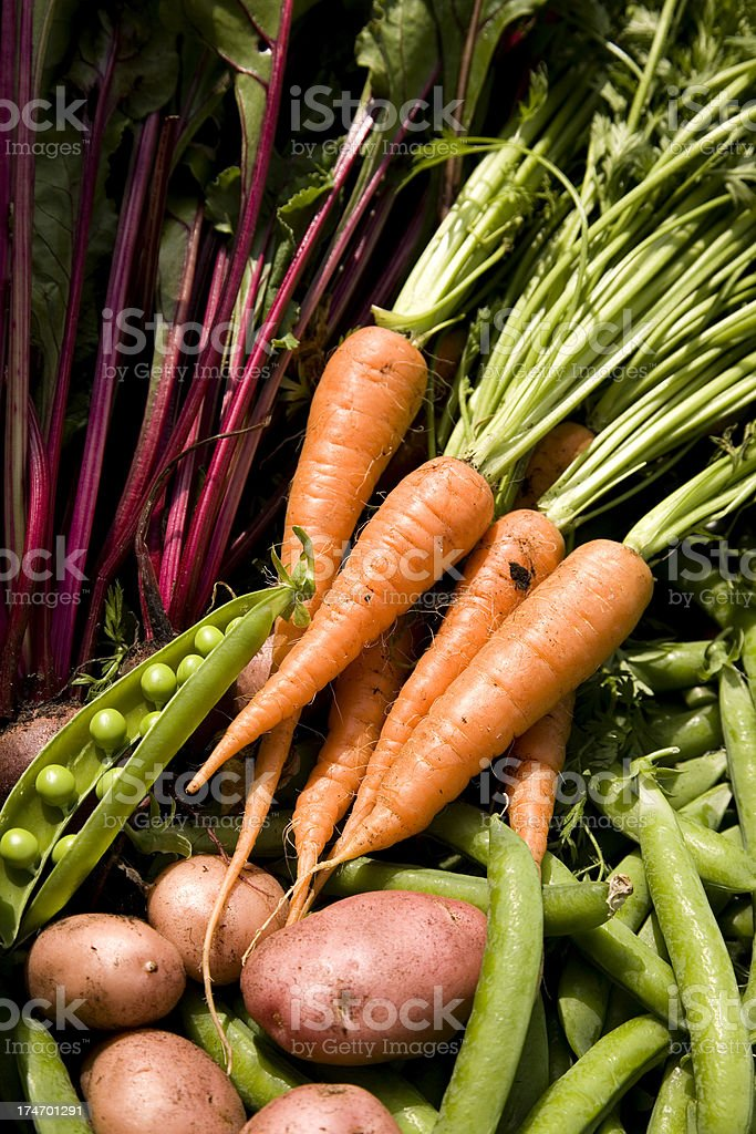 Vegetables royalty-free stock photo