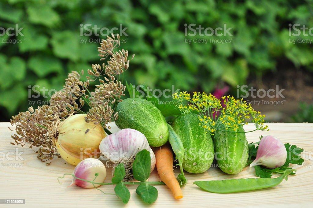 Vegetables. stock photo