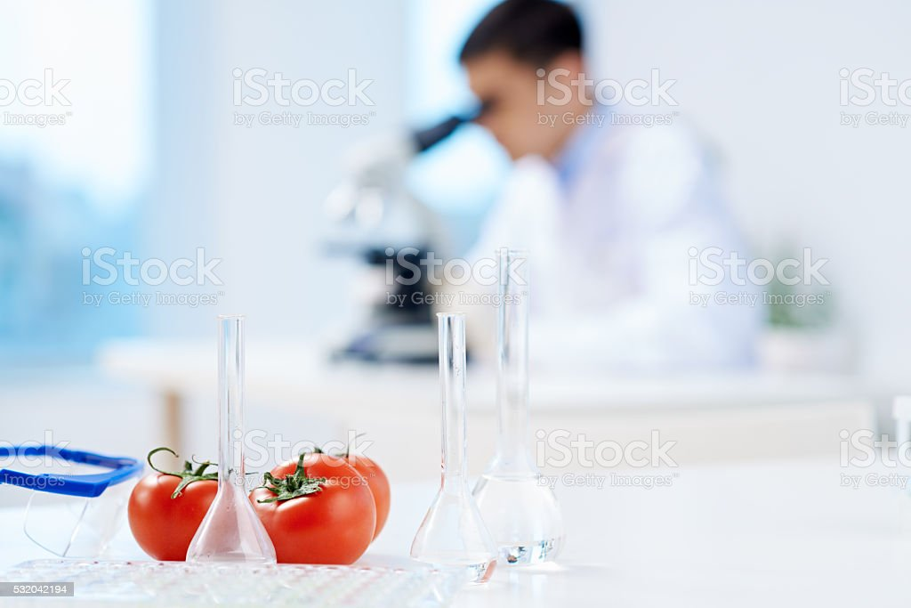 GM vegetables stock photo