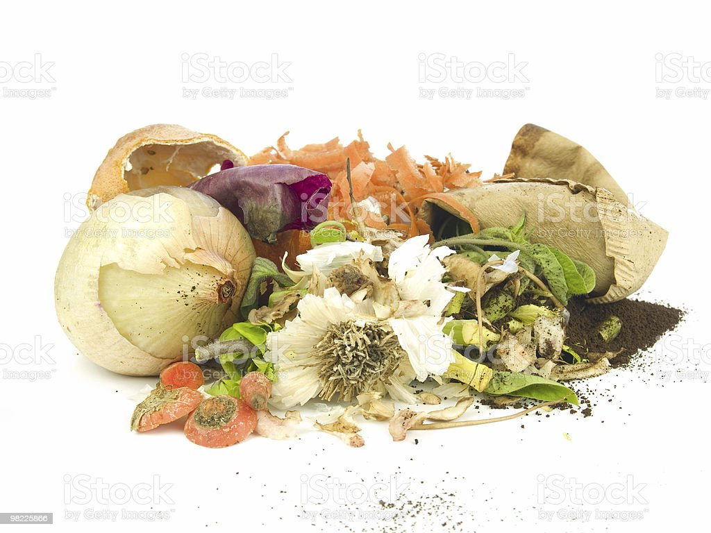 Vegetables ready for the compost on a white backdrop stock photo