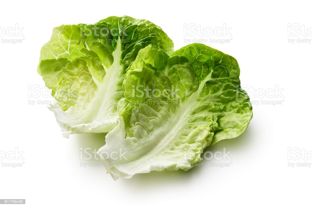 Vegetables: Romaine Lettuce Isolated on White Background stock photo