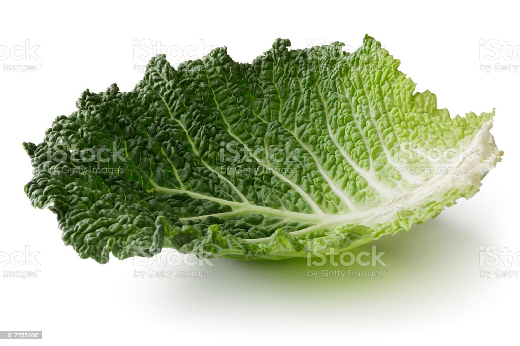 Vegetables: Savoy Cabbage Isolated on White Background stock photo