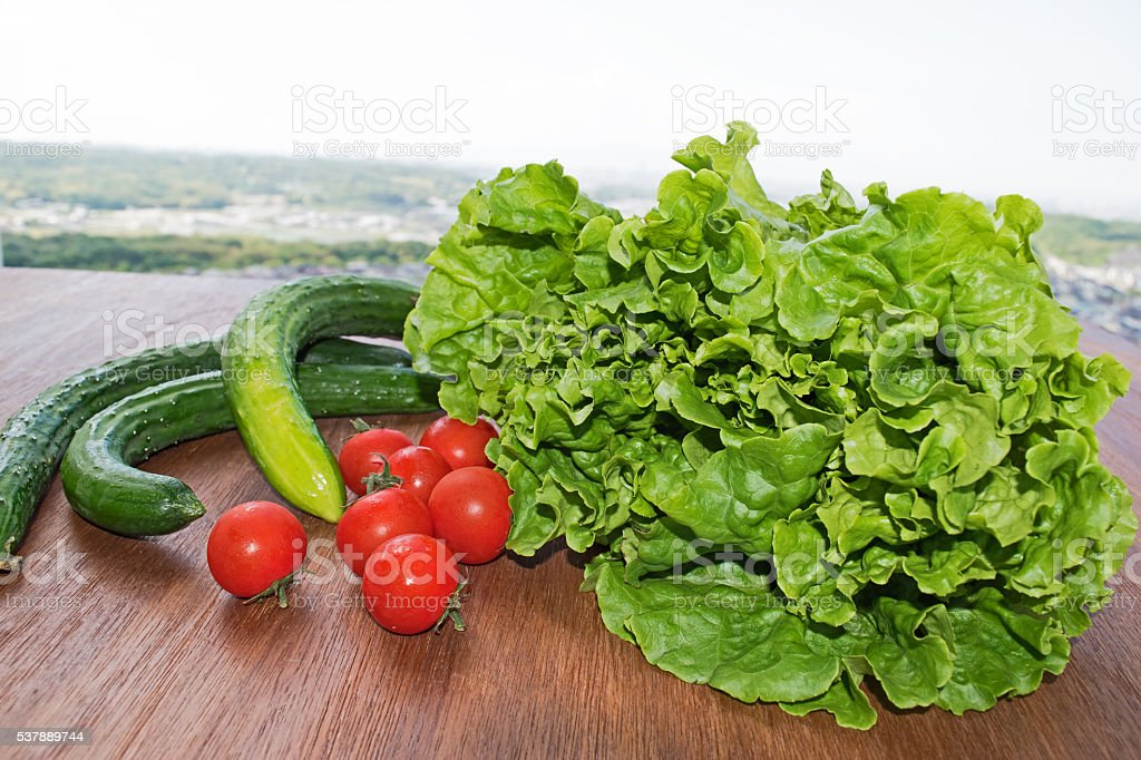 Vegetables. Tomato, cucumber, green salad wooden stock photo
