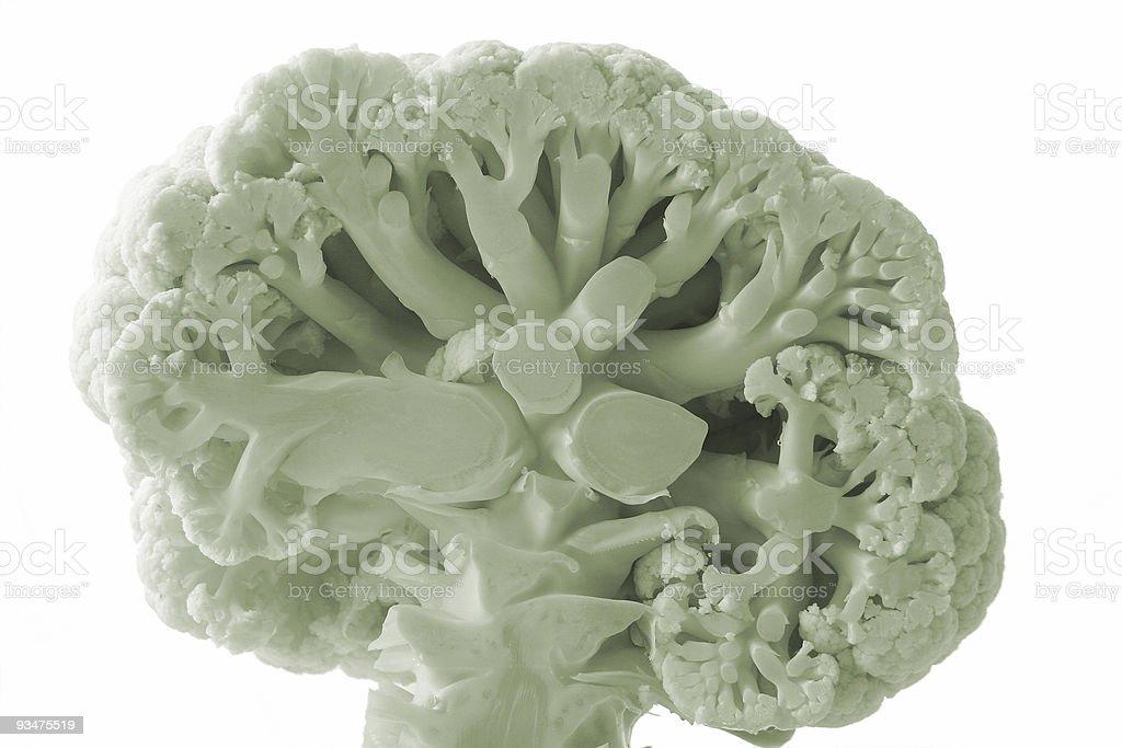 Vegetarian brain royalty-free stock photo