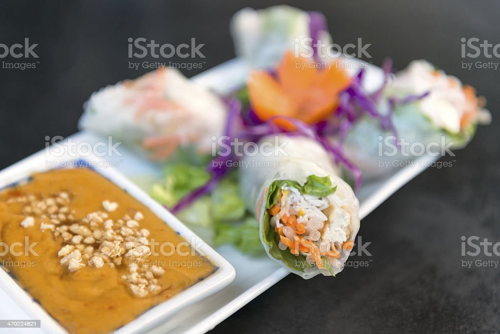 Vegetarian Salad Roll with Peanut Dipping Sauce royalty-free stock photo