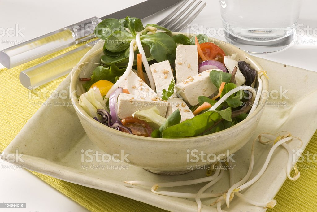 Vegetarian salad with bean sprouts, tofu, spinach and tomato royalty-free stock photo