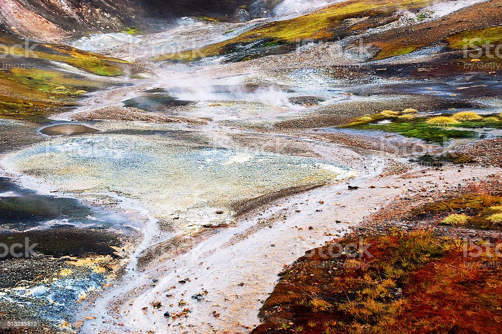 Vegetation in a geothermal field,Iceland stock photo