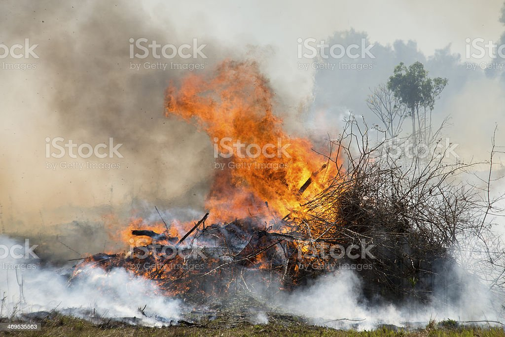 Vegetation stack on fire during a hazard reduction burn stock photo