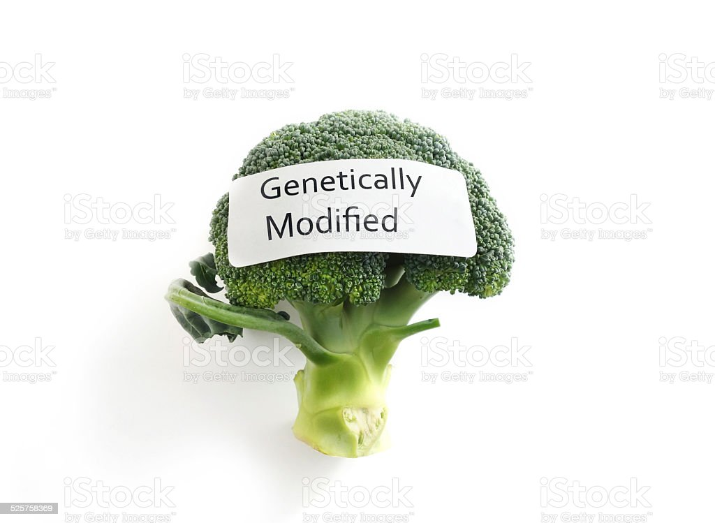GMO veggie stock photo