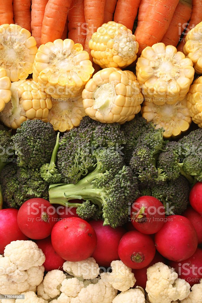 Veggies in rows royalty-free stock photo