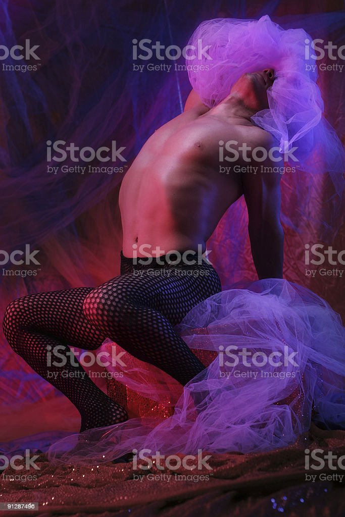 Veil royalty-free stock photo