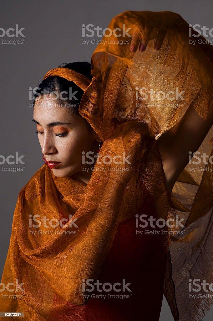 Veiled beauty stock photo