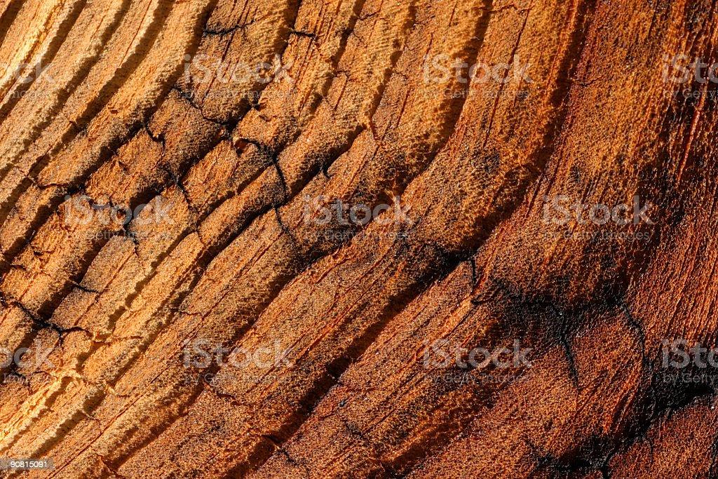 Veinied wood royalty-free stock photo
